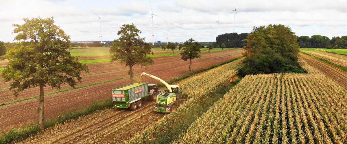 Rathmann_Landwirtschaft
